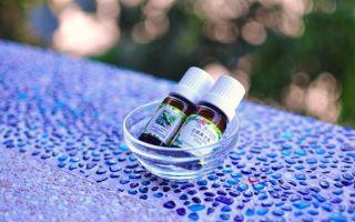 Применение эфирного масла из перечной мяты