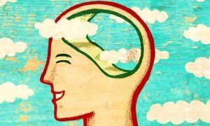 Улучшение памяти и работы мозга народными средствами