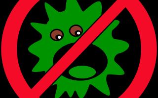 Что такое гуморальный иммунитет и какие у него механизмы работы