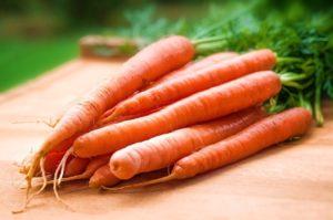 красивая морковка фото